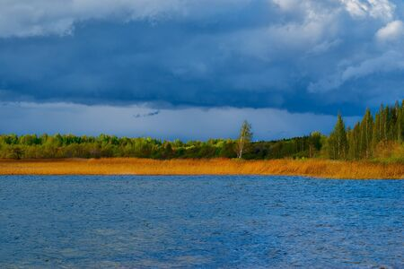 landscape of the blue lake with trees and a cane grass ashore and the storm cloudy sky