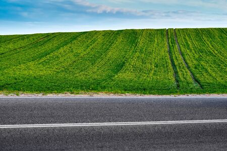 rural landscape of the sowed green hilly field on the horizon of the blue sky and a part of the asphalt highway closeup Banco de Imagens