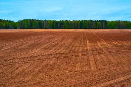 landscape of the agricultural field and arable lands against the background of the sky and the forest on the horizon