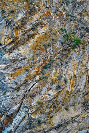 bumpy texture of a part of a rock with a natural stone closeup for an abstract natural background Banco de Imagens