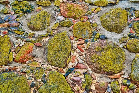part of abstract stone wall covered with green moss for abstract background closeup Banco de Imagens