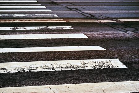 part of the old white markings of a pedestrian crossing on the black asphalt closeup