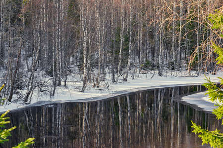 beautiful landscape closeup in the forest with river, trees and snow