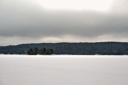 winter landscape with white snow in a field or on a large lake and with forest on the horizon