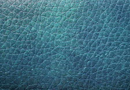 Blue skin texture Stock Photo - 17875325