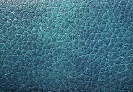 Blue skin texture Stock Photo - 17875325