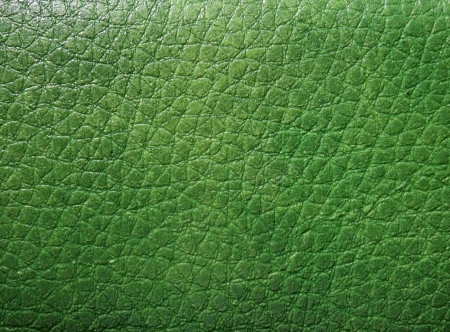 Green skin texture Stock Photo