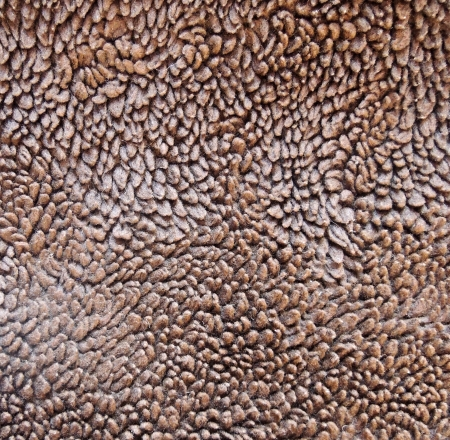 furry stuff: Brown fur background macro