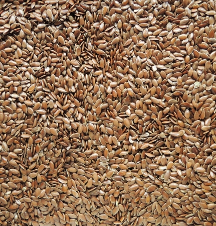 common flax: Linseed background
