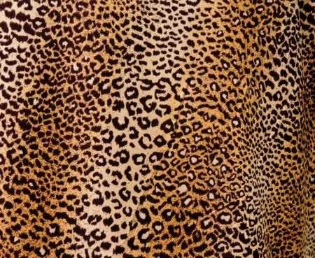 guepardo: Fondo de leopardo  Foto de archivo