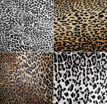 Wild Animal pattern collage photo