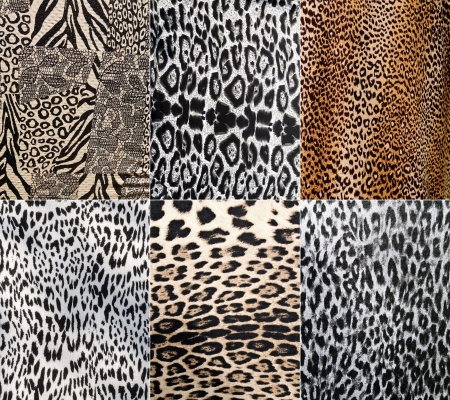animal scale: Wild Animal pattern collage