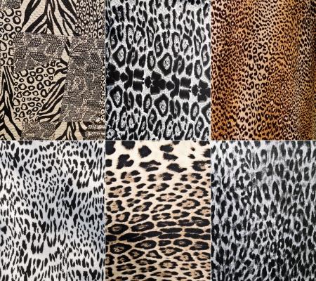 animal skin: Wild Animal pattern collage