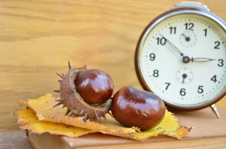 Old vintage clock and chesnut photo