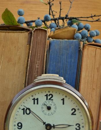 decrepitude: Vintage clock and books