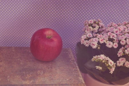 Vintage flowers and apple on book photo