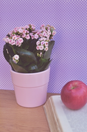 Apple on book and beautiful flowers photo