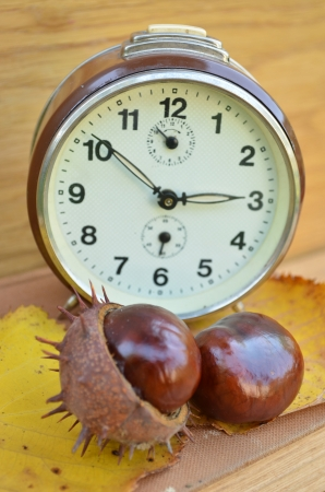 Old clock and chestnut  photo