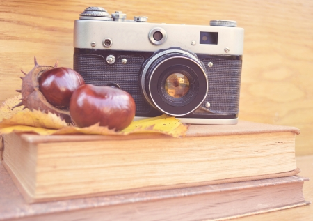recollection: Vintage camera on book and chestnut  Stock Photo