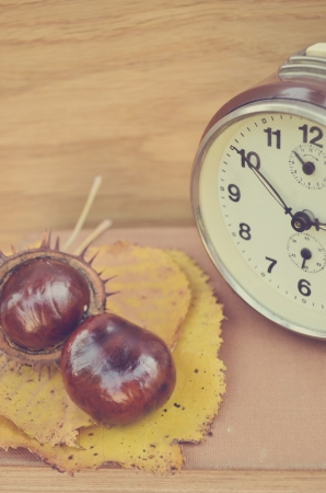 Vintage chestnut with old clock on book photo