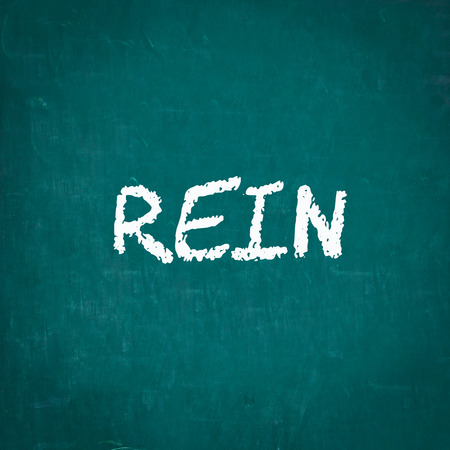 rein: REIN written on chalkboard Stock Photo