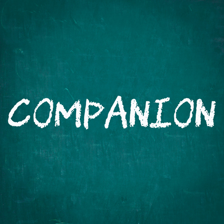 companion: COMPANION written on chalkboard Stock Photo