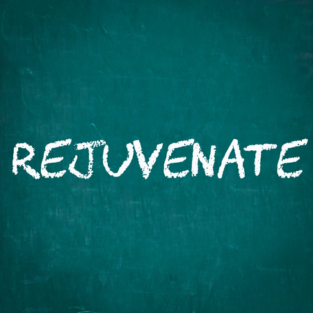 rejuvenate: REJUVENATE written on chalkboard Stock Photo