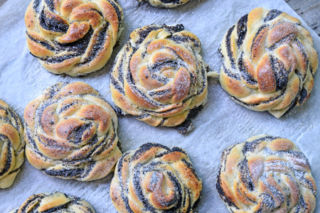 seed: Poppy seed buns
