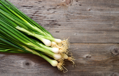 bulb and stem vegetables: Fresh young onion on wooden table