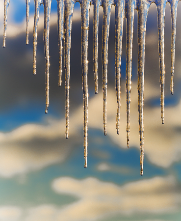 Winter icicles on a background of the early sun frosty morning Stock Photo