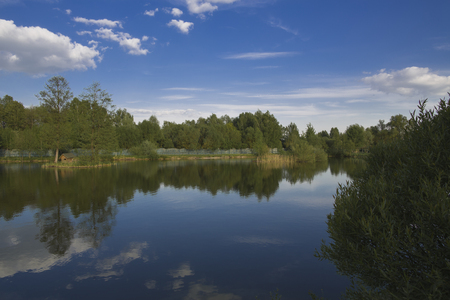 Landscape. The small lake with the wood on the horizon.