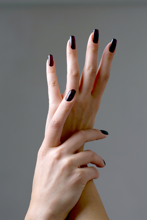 Beautiful female hands with long black nails