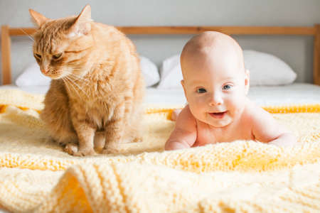 Cute infant baby next to a red impudent fat cat looking at camera on a knitted yellow plaid on a white bed. Copyspace