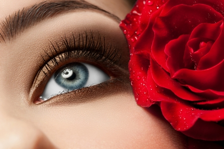 Close-up of beautiful woman eye with red rose and stylish makeup photo