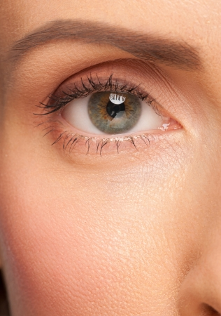 Close-up shot of beautiful female eye with makeup  photo