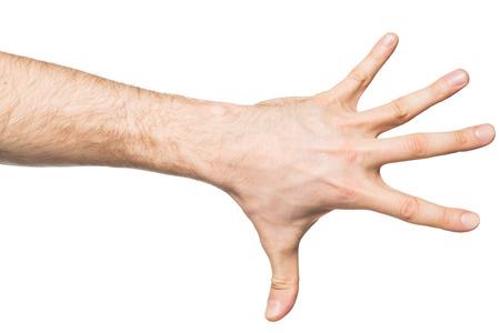 dedo indice: Contando gesto, mano masculina que muestra cinco dedos, aislado en fondo blanco Foto de archivo