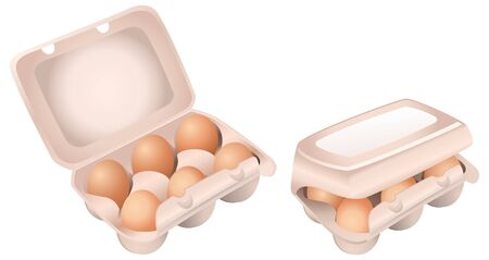 Set of Chicken Eggs in Boxes on White Background Ilustracja