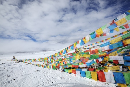 tibet: tibetan prayer flags in snow photo