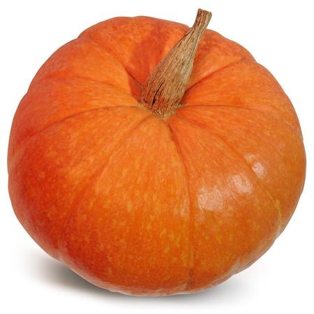 Big pumpkin on a white background orange pumpkin Foto de archivo