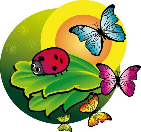 vektoros illusztráció katicabogár