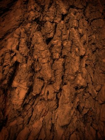 Fa kéreg textúra, kérge Pine Tree, Régi fa szerkezetű, Vértes banyan fatörzs gyökerei faragásokkal Stock fotó