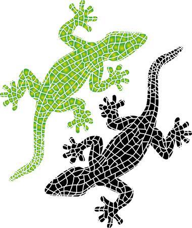 salamandre: Belle lézard coloré isolé sur fond blanc Illustration