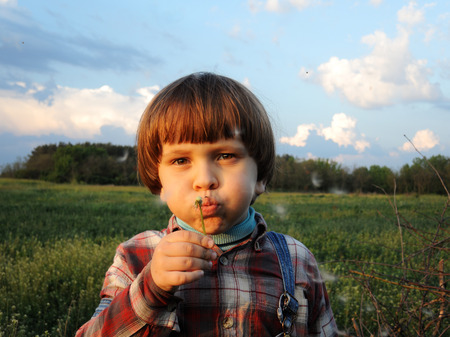 Little boy blowing dandelion in the rays of the setting sun. Boy on blue sky background.