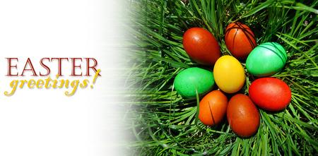 Húsvéti tojások feküdt a zöld mezőn. Húsvéti csendélet a minta szöveg. Stock fotó