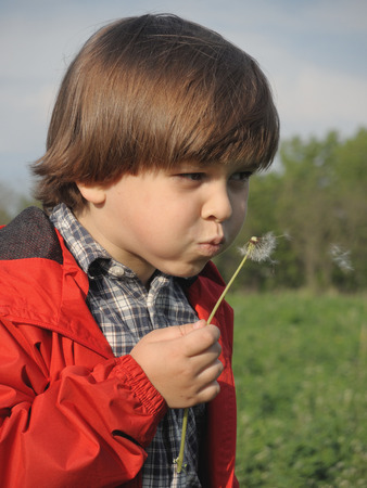 Beautiful little boy blowing dandelion. Happiness, fashionable concept.