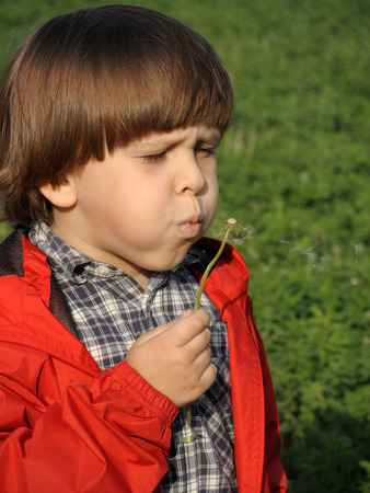 Beautiful little boy blowing dandelion. Happiness, fashionable concept.