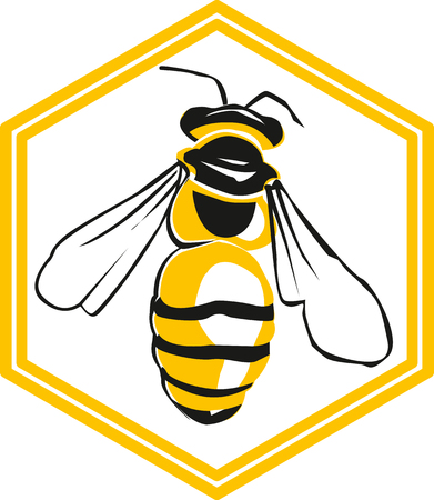 Vector bee and honeycombs, vector illustration of bee, icon.