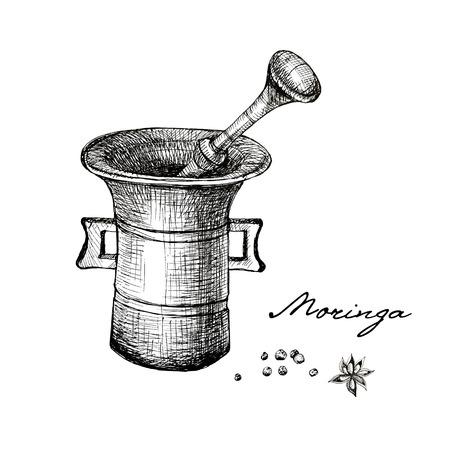 Vintage mortar and spice, hand drawn illustration. Vintage engraved illustration.