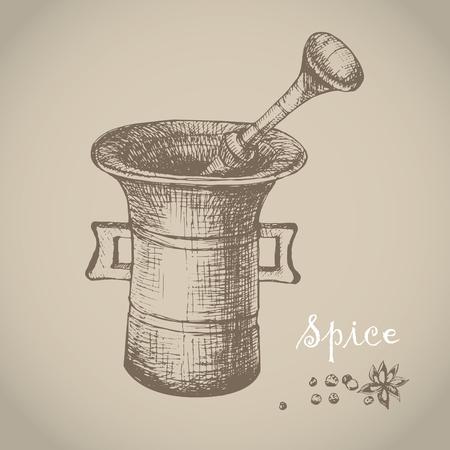 Vintage mortar and spice, vector hand drawn illustration. Vintage engraved illustration.