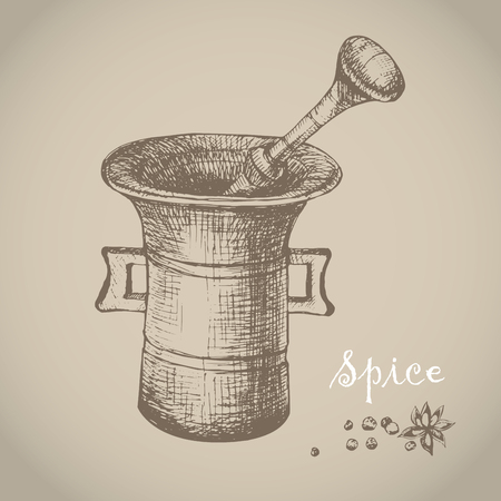 homeopathic: Vintage mortar and spice, vector hand drawn illustration. Vintage engraved illustration.